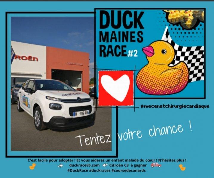 Duck Maines Race 2_03